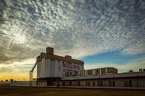 morning sky building architecture clouds sunrise us texas unitedstates rice houston structure warehouse silos genie mahatma tiltshift artstudios canontse24mmf35lii silosonsawyer