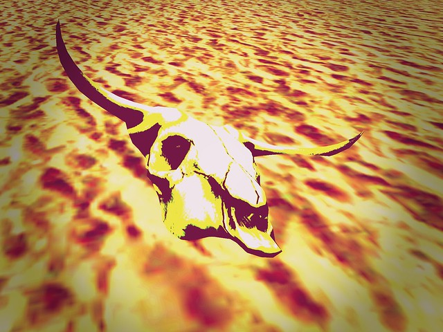 LEA27 The City - Taking the Desert By the Horns