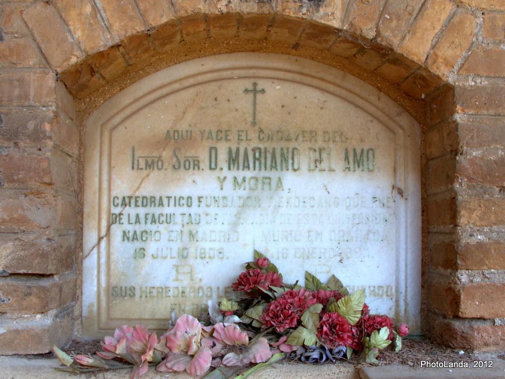 Mariano del Amo y Mora