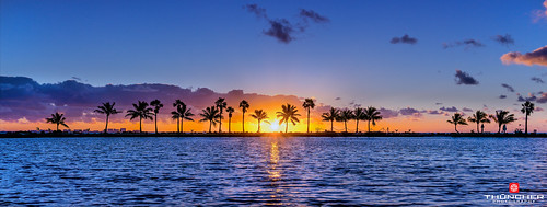 beach florida sony hammock fe za f4 1635mm parkcoral ossfxfull a7r2 a7r2ilce7rm2zeiss framesceniclandscapewaterscapenatureoutdoorsskycloudssunrisereflectionstropicalpalm treessilhouettesmatheson gablesmiamifloridasoutheast