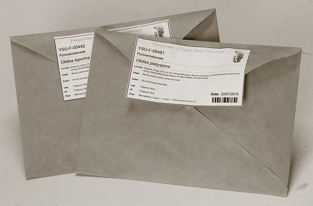 The dried specimens stored in zip-lock bags and packed in krafft-paper envelopes.