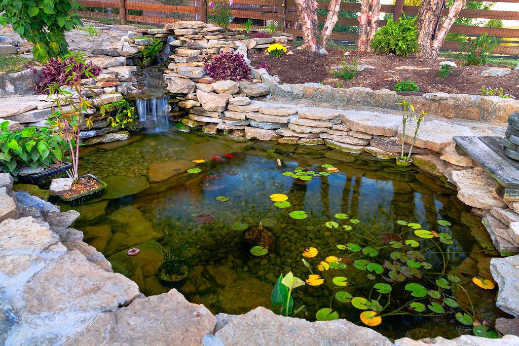 bigstock-Decorative-koi-pond-in-a-garde-46793248
