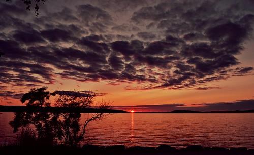 sunsetonthelake sunset lake landscape nature nikond3200 evening night summer finland suomi luonto maisema järvimaisema järvi light sky clouds taivas waterscape water view vesijärvi tree silhouette europe