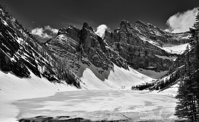 Taking in a Wintry Landscape at the Lake Agnes Teahouse (Black & White, Banff National Park)