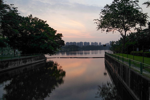 park trees lake reflection sunrise river dawn singapore juronglakepark