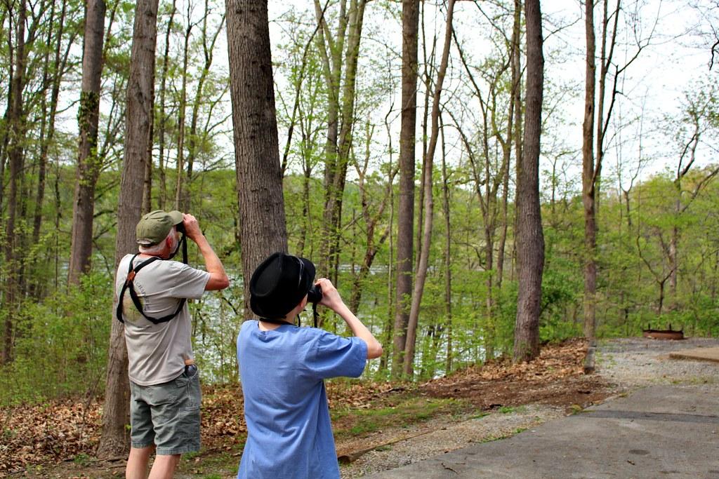 Birdwatching5