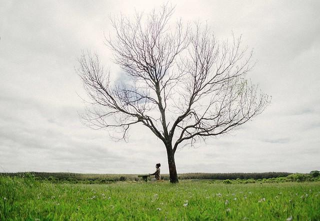I want to be like a tree.