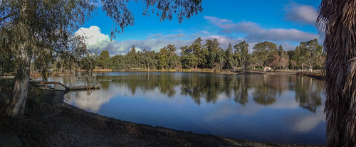 california park ca blue trees panorama lake green water clouds outdoor losgatos vasonalakecountypark