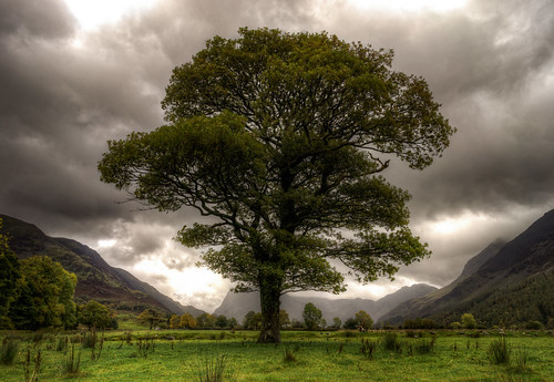 Buttermere Lake - Lake District | by fragrance190