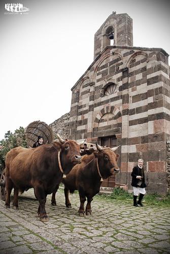 Su Carruzu a s'antiga   by cristianocani