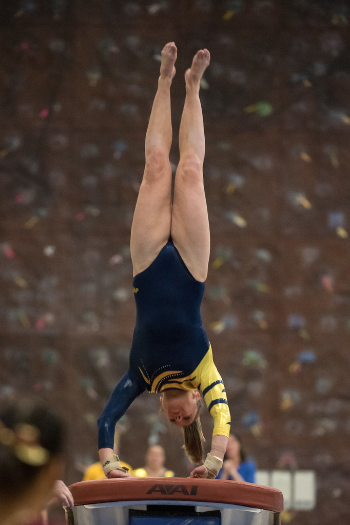 1-8-201 | Gymnastics | Photo by Bill Hoepner | UWEC Photo ...