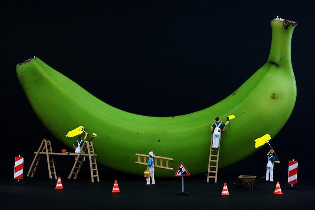 Wie wird die Banane gelb?Die Bananenmaler kommen über Nacht!How will the banana yellow?The painter come overnight!