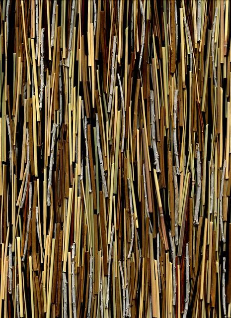 57125.01 ferns, Secale, Helichrysum, Miscanthus