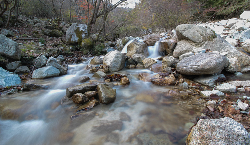 20141122-武奈ヶ岳&京都ライトアップ-0462.jpg