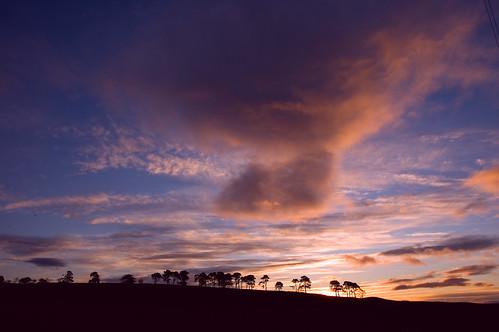 sky tree sunrise d50 scotland nikon day aberdeenshire cloudy balloch alford cairnballoch stronehill