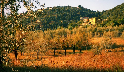 Fiesole | by colros