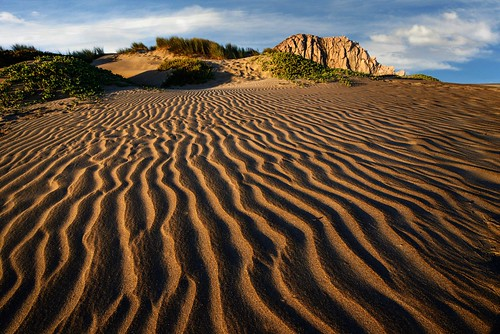 park beach bay san state dunes morro