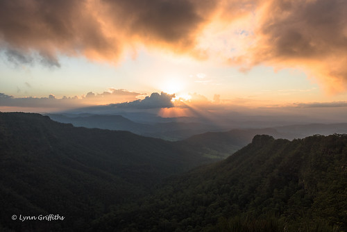 sunset mountain oreilly forest landscape australia valley queensland eveninglight coutryside watermarked landscapephotography coth greatphotographers outdoorphotography coth5