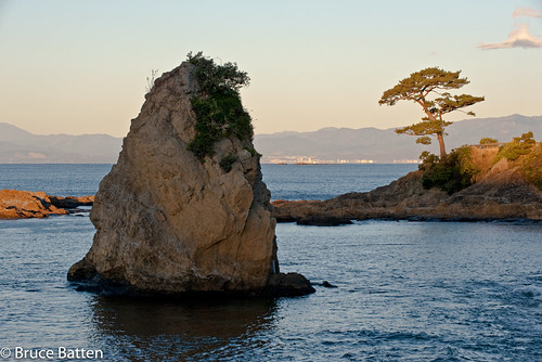 trees locations tateishi kanagawa northpacificocean plants oceansbeaches subjects reflections yokosuka parks sagamibay sunrises japan rocksgeologicalformations kanagawaprefecture jp honshu