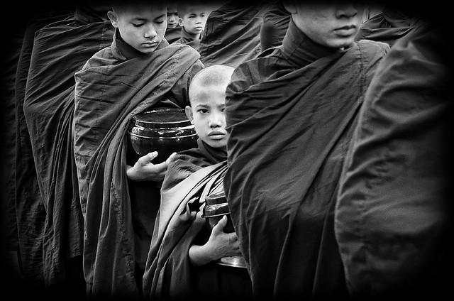 Burmese look