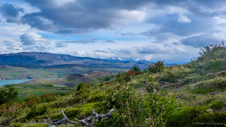 Landscape from Patagonia
