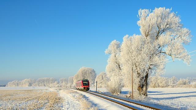 Wintermärchen im Harzvorland