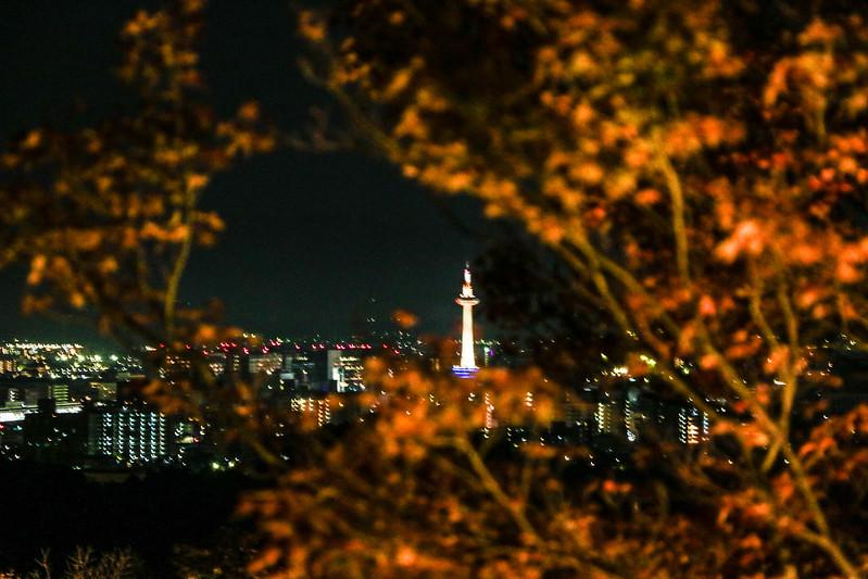 20141122-武奈ヶ岳&京都ライトアップ-0759.jpg