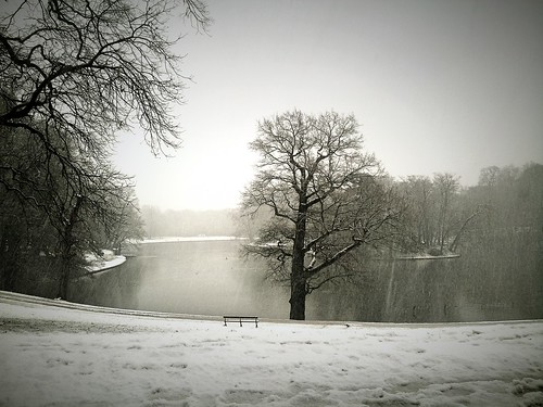 Winter serenity | by Amanda's Imaginarium