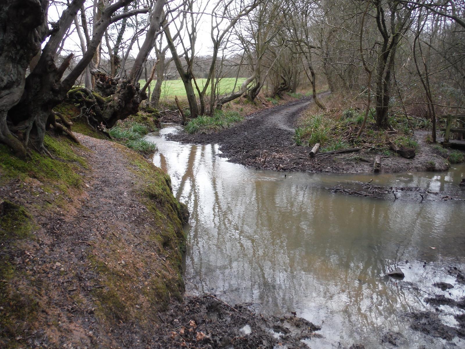 Ermine Street Roman Road fording Spittal Brook, Hoddesdonpark Wood SWC Walk 168 Broxbourne Circular