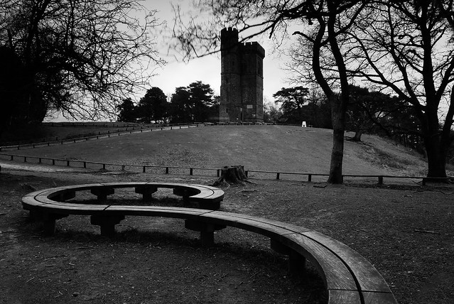 The Tower at Leith Hill