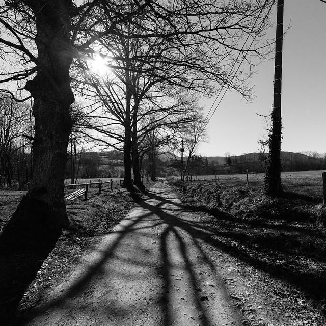 Chemin ariégeois
