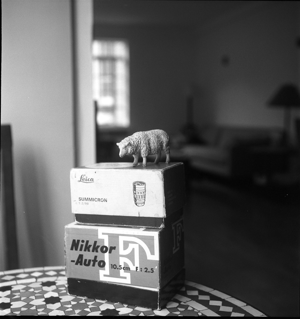 Old lens boxes taken with old lens (and a sheep)