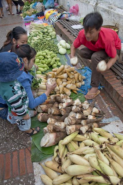 LAO221 Luangprabang 162 - Laos