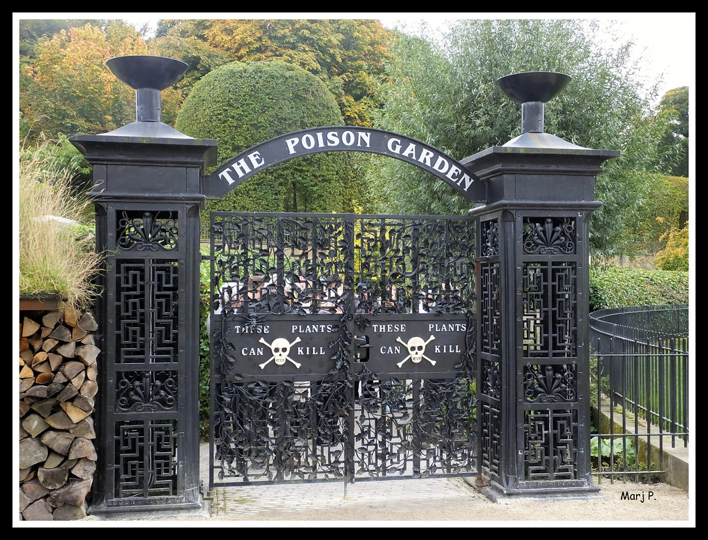 The Poison Garden Alnwick Castle Gardens Northumberland Flickr