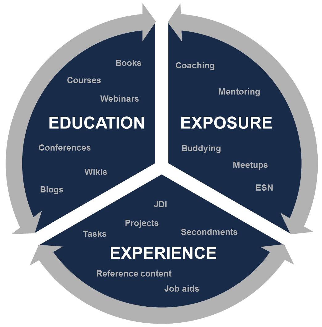 The 3 E's: Education, Exposure, Experience
