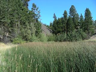 Cartwright pond2