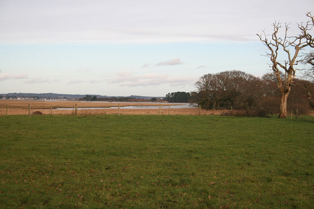 Wych Lake, Poole Harbour