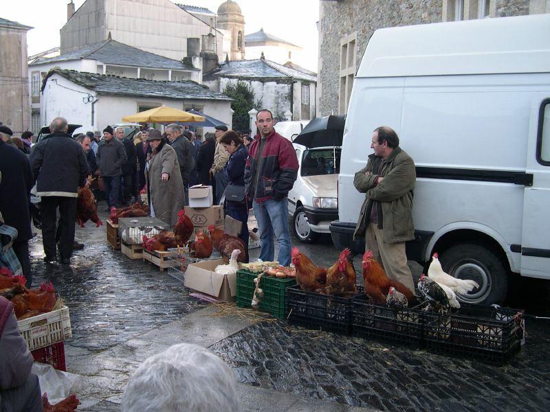 Mercado del capón en Villalba (Lugo) | Mercado de gallos que… | Flickr