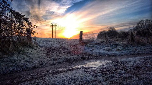 england rural sunrise gate frosty wiltshire morining lumia forsty snapseed 950xl