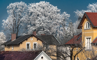 Rime in Town | by Bernd Thaller