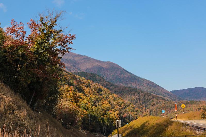 20141122-武奈ヶ岳&京都ライトアップ-0495.jpg