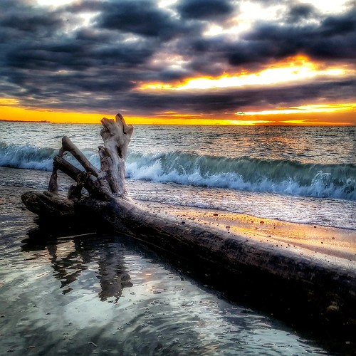 light favorite toronto ontario sunrise spring cool shoreline spell driftwood shore stunning lakeshore scarborough lakeontario striking greatlake