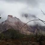 ajo mountains