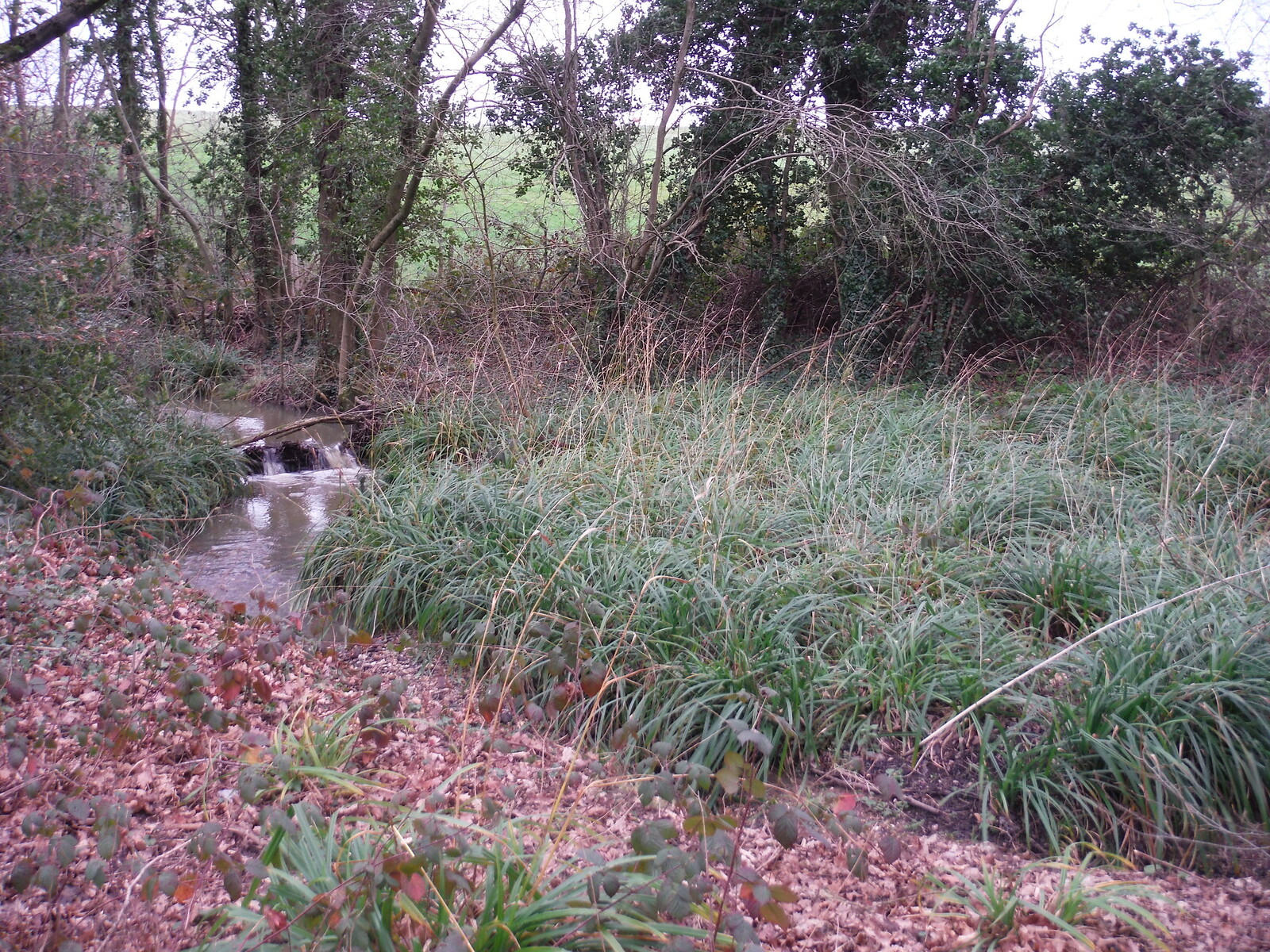Spittal Brook, near A10 Underpass SWC Walk 168 Broxbourne Circular