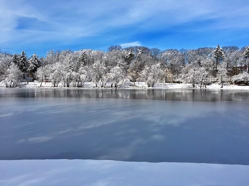 trees winter snow water boston landscape frozen pond massachusetts newengland jamaicaplain pw jamaicapond