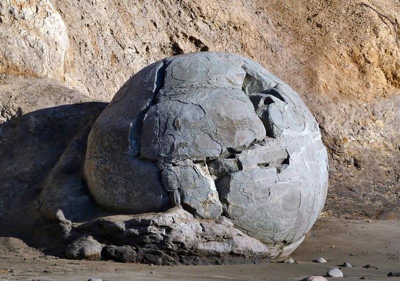 Moeraki boulder. NZ.