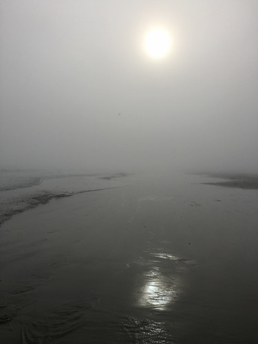 beach landscape us texas unitedstates portaransas mikaelbehrens