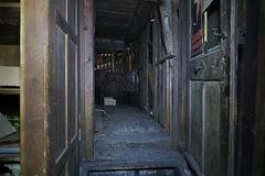 Abandoned Premises - Tinder-dry