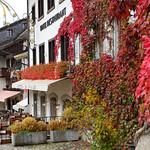 04 Viajefilos en Gruyere, Suiza 38