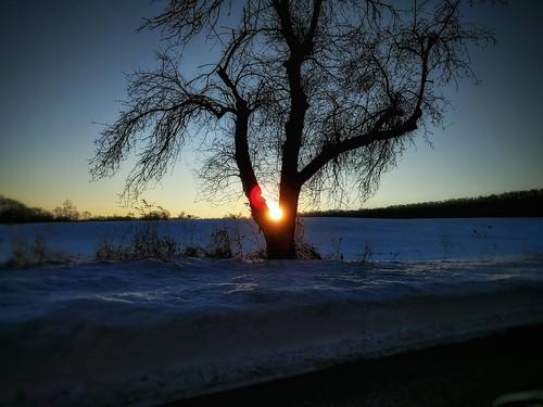 sunrise morningsky